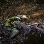 Top 10 des activités insolites à faire à la Réunion
